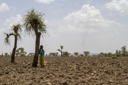 A woman stands in an arid, drought-ridden farmland in Ethiopia